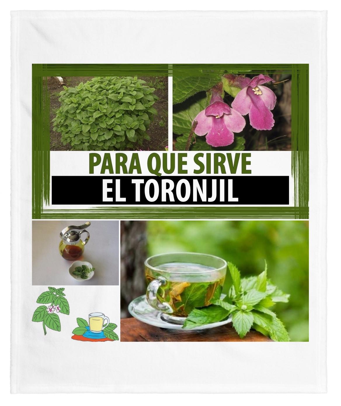 Toronjil Propiedades, beneficios y para que sirve