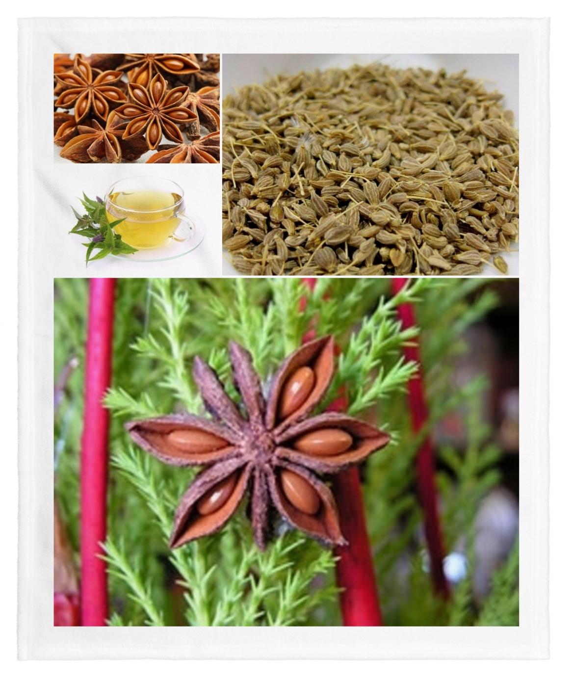 Anís verde y estrellado: Propiedades, beneficios y para que sirve